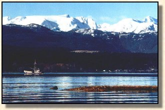 A view of the Glacier